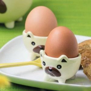 Äggkoppar hundar - mops